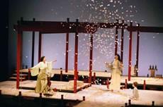 Madame Butterfly - Critique sortie Classique / Opéra