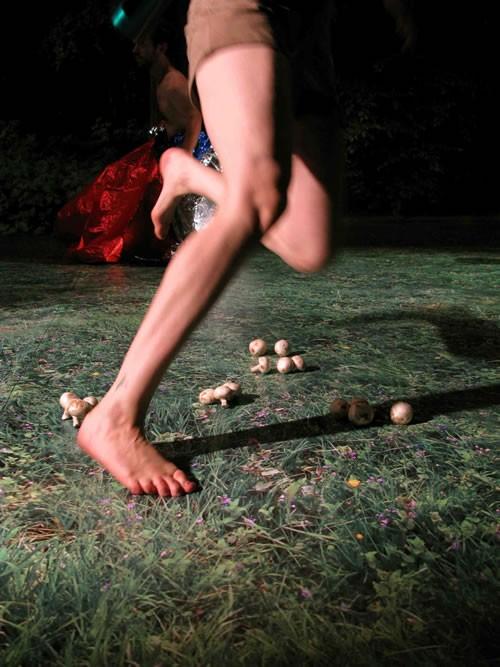 Les nouvelles Graines d'opéra - Critique sortie Avignon / 2009