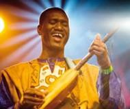 Bassekou Kouyate,le blues made in Mali - Critique sortie Jazz / Musiques