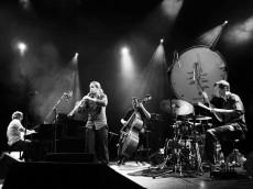 Jazz Migration 2009 - Critique sortie Jazz / Musiques