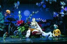 Les Marionnettes de Salzbourg - Critique sortie Classique / Opéra