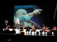 Et aussi: les grands spectacles incontournables - Critique sortie Classique / Opéra