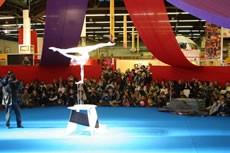 Salon mondial du cirque, deuxième édition ! - Critique sortie Danse
