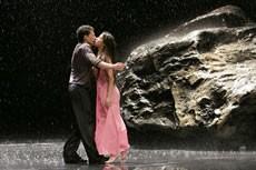Vollmond & Masurca Fogo - Critique sortie Danse