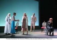 Soudain l'été dernier - Critique sortie Théâtre