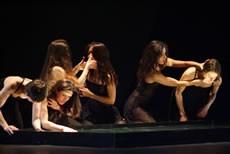 Carlson à l'affiche en mars - Critique sortie Danse