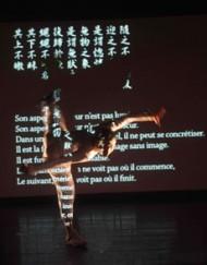 Planète Kung Fu - Critique sortie Danse