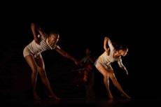 Bound et Southern Comfort - Critique sortie Danse