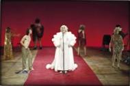 Gardenia - Critique sortie Danse