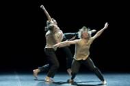 Les Plateaux - Critique sortie Danse