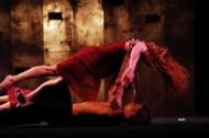 Soirée Stravinsky - Critique sortie Danse