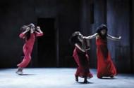 DOPO LA BATTAGLIA - Critique sortie Théâtre