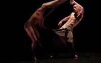 Crédit photo : Nicolas Fayol Légende photo : Les danseurs défont les apparences.