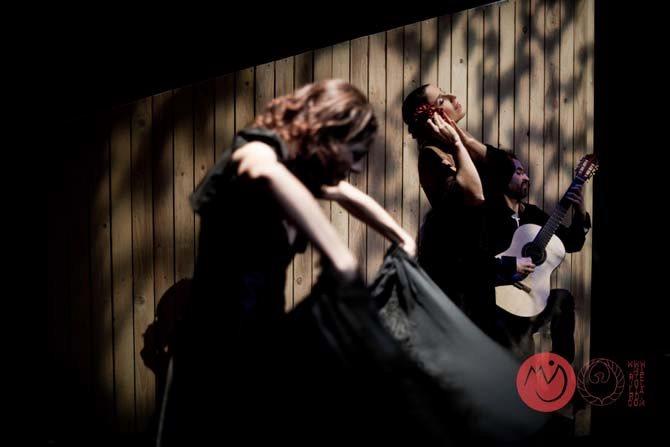 Lyric Hispanic - Critique sortie Avignon / 2013 Avignon Théâtre au coin de la Lune