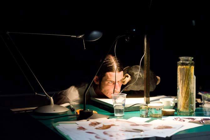 Si vous désespérez un singe, vous ferez exister un singe désespéré, Smatch (1) - Critique sortie Avignon / 2013 Avignon Théâtre des Doms