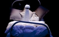 Les monstres surgissent dans la solitude d'un grand lit. © Sylvain Séchet