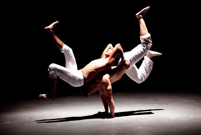 Cirques singuliers - Critique sortie Cirque Granville L'Archipel