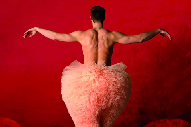 Tutu - Critique sortie Danse Paris Bobino
