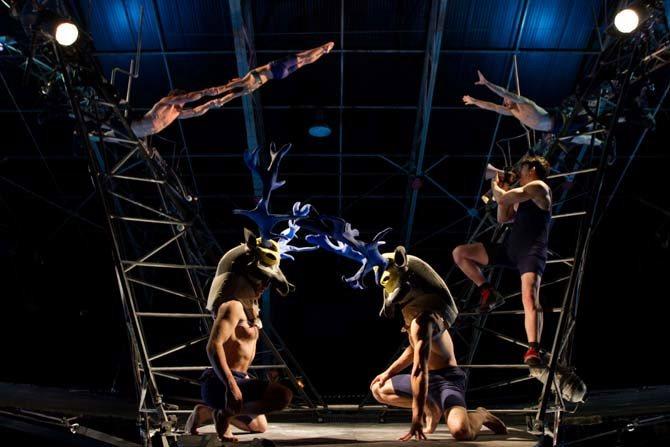 cirque grand format - Critique sortie