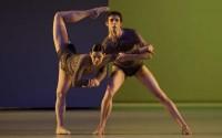 Crédit : Ann Ray – Opéra national de Paris Légende : Alice Renavand et Josua Hoffalt dans L'Anatomie de la sensation de Wayne McGregor