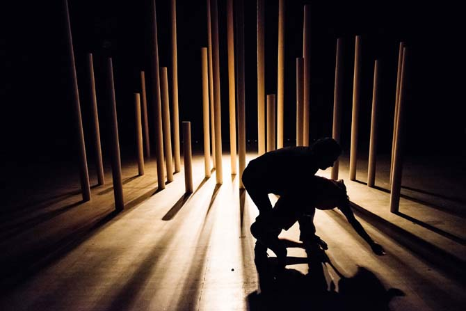 Les Multipistes - Critique sortie Cirque Douai Douai Hippodrome