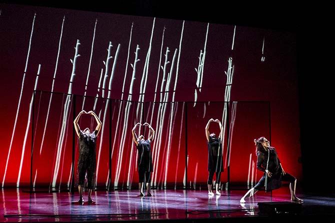 Focus Austral - Critique sortie Danse Paris Chaillot - Théâtre national de la danse