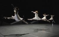 Crédit : Jean-Claude Carbonne Légende : Spectral Evidence par le Ballet Preljocaj.