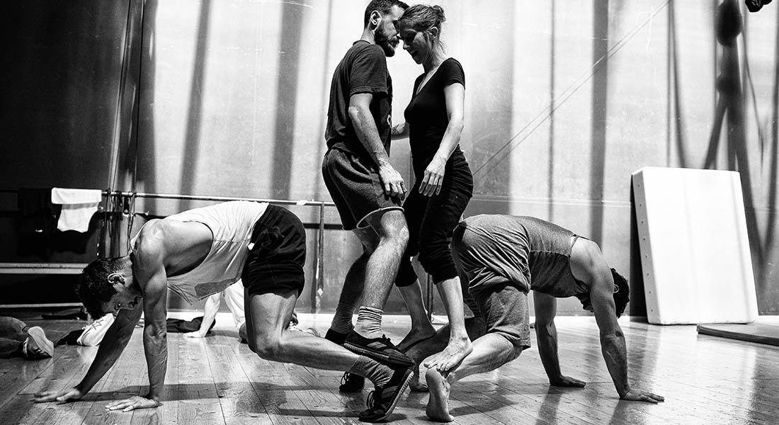 Rare birds - Critique sortie Théâtre Antony Espace cirque d'Antony
