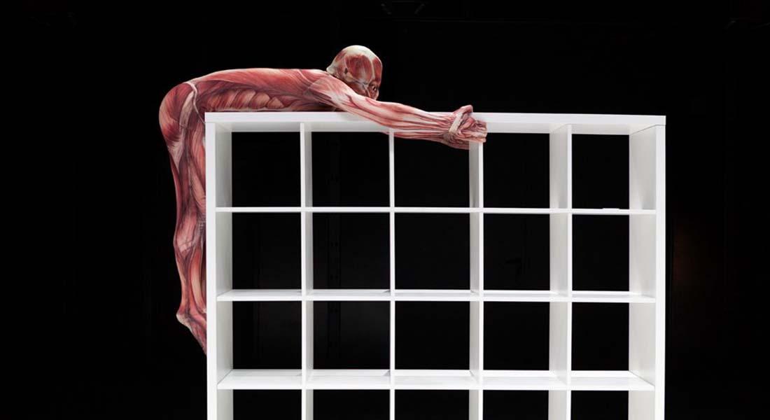 Affordable Solution for Better Living - Critique sortie Danse Nanterre Nanterre-Amandiers
