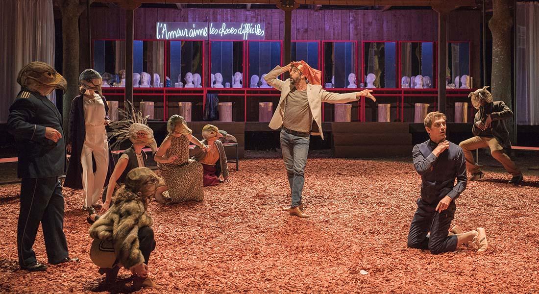 La Conférence des oiseaux - Critique sortie Théâtre Colmar Comédie de l'Est - CDN de Colmar
