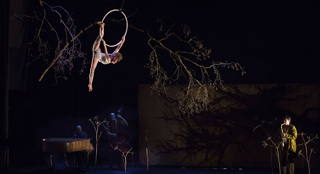 La dernière saison - Critique sortie Cirque Paris