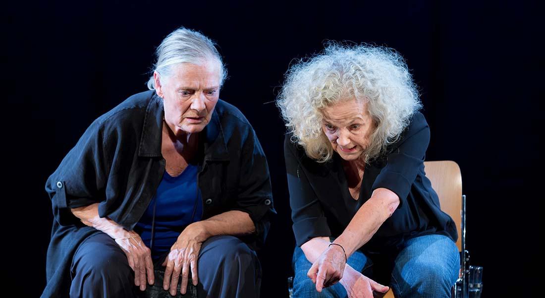 La Nostalgie des blattes - Critique sortie Théâtre Paris Théâtre du Petit Saint-Martin