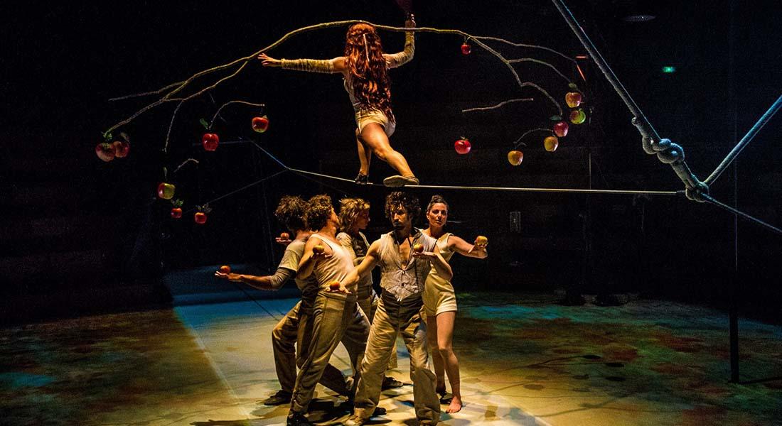 Sous la toile de Jheronimus - Critique sortie Cirque Antony Espace cirque d'Antony