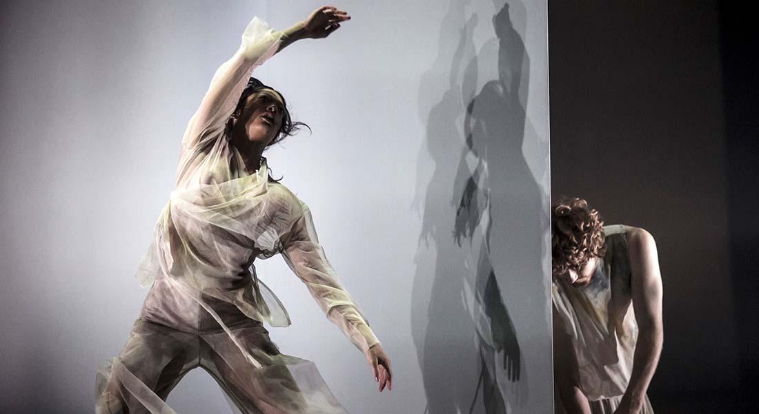 Dust, la danse déliée des interprètes du Dancenorth Australia - Critique sortie  Paris Chaillot - Théâtre national de la danse