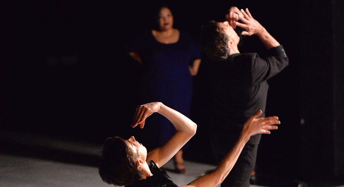 Dans Cartel, Michel Schweizer explore le monde de la danse classique - Critique sortie  Vélizy-Villacoublay L'Onde - Théâtre Centre d'art