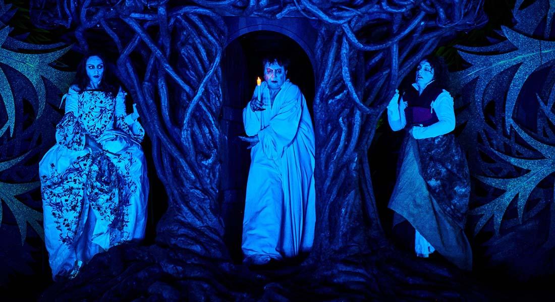 George Dandin ou le Mari confondu de Molière, mise en scène Michel Fau - Critique sortie   Château du Plessis-Macé